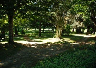 Le Parc - Gîte La maison Philippe - Gers DSC_0042